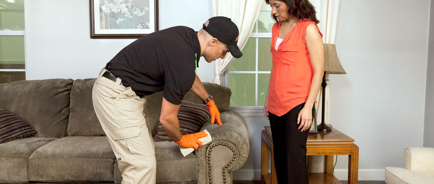 Bloomington, IN carpet upholstery cleaning